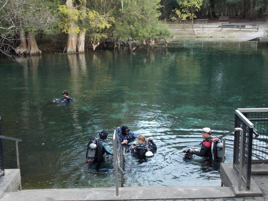 4-Manatee- Springs-FUN-Dive-2013-10-20